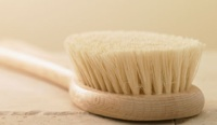 Dry Skin Brushing Daily for a Natural Detox