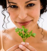 Parsley is great for kidneys