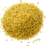Millet - More than Bird Seed!