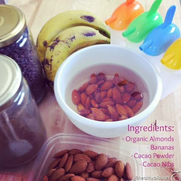 Blend just a few simple organic ingredients to make yummy frozen raw treats!