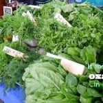 Is there too much Oxalic Acid in greens like kale, spinach, or Swiss Chard?