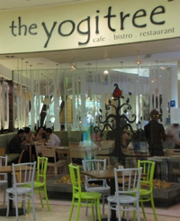 Yogi Tree Cafe - Wheatgrass Yeah!